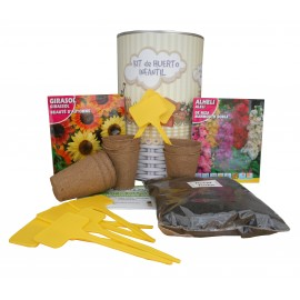 Kit de huerto urbano infantil con semilleros, tierra turba, Alheli, Girasol y marcaje de semilleros