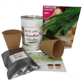 Kit de cultivo Cebollino en lata