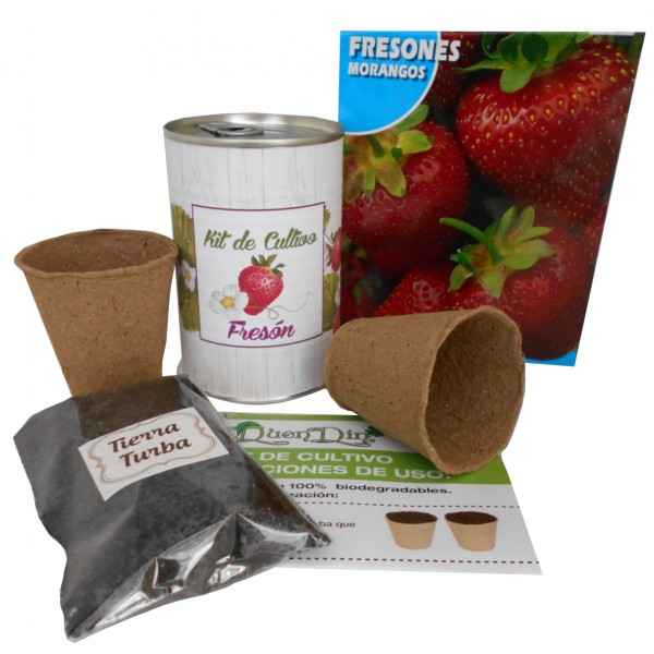 Kit de cultivo fresones en lata